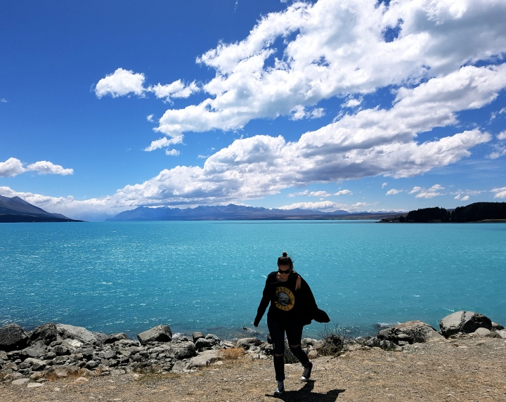 South island road trip / newzealand